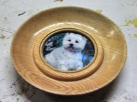 Photo frame bowl